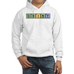 CSINY Made of Elements Hooded Sweatshirt