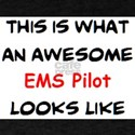 awesome ems pilot T-Shirt