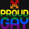 Proud Gay (colored) T-Shirt