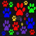 Rainbow Paws T-Shirt
