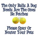 Only Balls A Dog Needs White T-Shirt